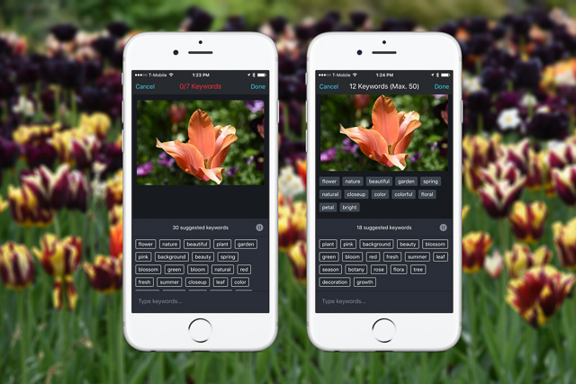 Shutterstock Introduces Autotagging for iPhone users