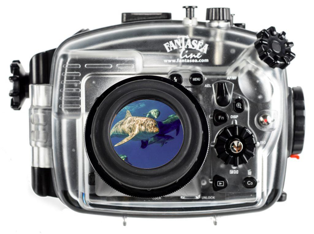 Fantasea LCD magnifier