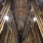 Nave Ceiling Ely Cathedral with Zeiss ExoLens Wide