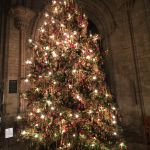 Christmas tree Ely Cathedral with Zeiss ExoLens Wide